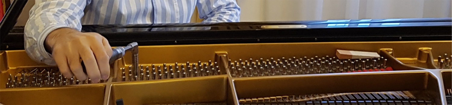 Tuning and Repair Services for grand and upright pianos